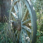 Patentando la rueda