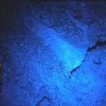 Tres escenas sobre tesoros marinos. ACTO III – El mayor tesoro de todos