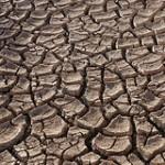 Texto con sorpresa: La Tierra se seca