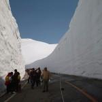 Las murallas de nieve de Yuki-no-Ootani